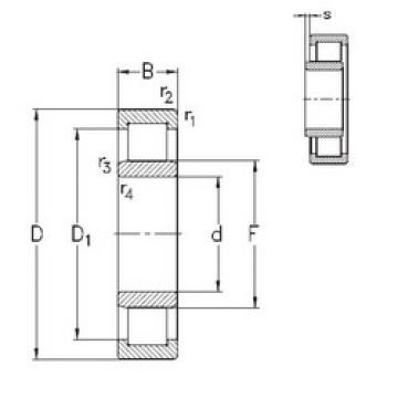 Bantalan NU344-E-MA6 NKE